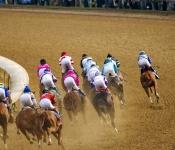 Kentucky Derby Racecourse