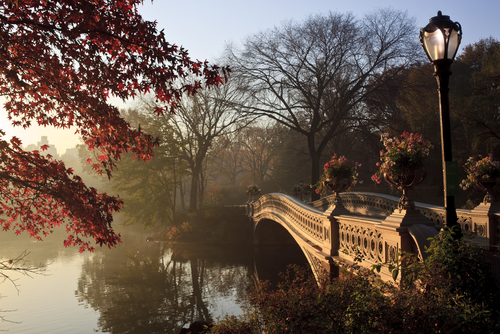 central park bridge new york city - Best Places To Spend Christmas In Usa