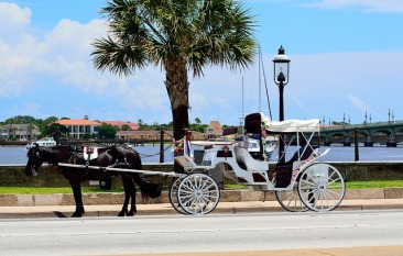 Horse and carriage downtown St. Augustine