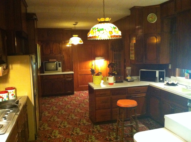 Graceland kitchen. Note the carpet on the floor - Photo credit Jason Dutton-Smith