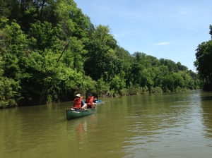 Slow and calm canoeing along the Harpeth River.
