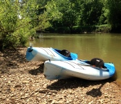 Foggy Bottom kayaks along the Harpeth River.
