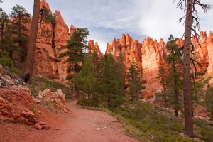 Bryce Canyon National Park Walking Trail