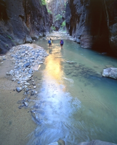 Zion National Park - Virgin River Streams