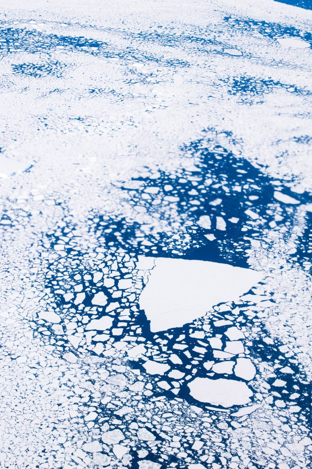 Icebergs can travel up to 100km (62miles) per day with the strong currents.